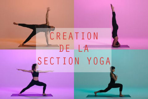 SLVie La Rochelle > Création de la section YOGA