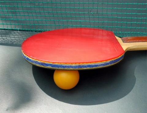 SLVie Royan : Tennis de Table