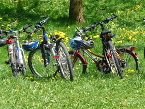 SLVie La Rochelle › Promenade à vélo