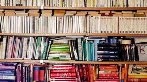 Section Bibliothèque La Rochelle